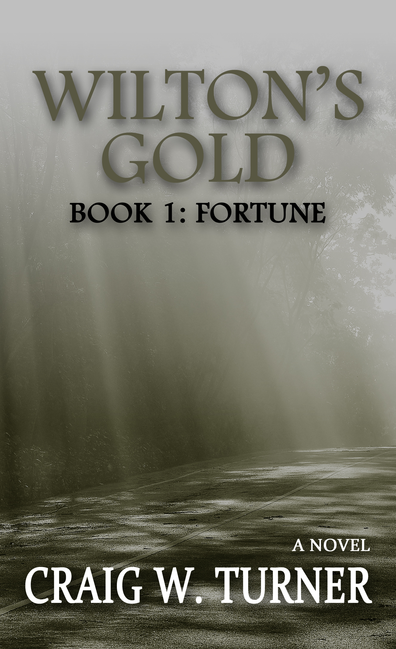 Wiltons Gold - A Time Travel Trilogy